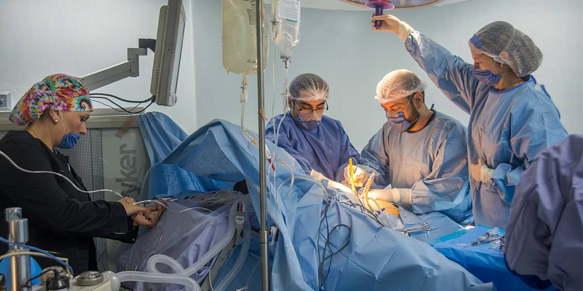 Weight Loss Surgery Failure Rate